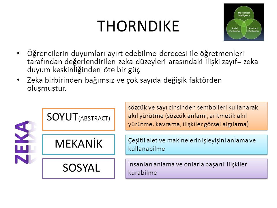 ZEKA THORNDIKE MEKANİK SOSYAL SOYUT(ABSTRACT)