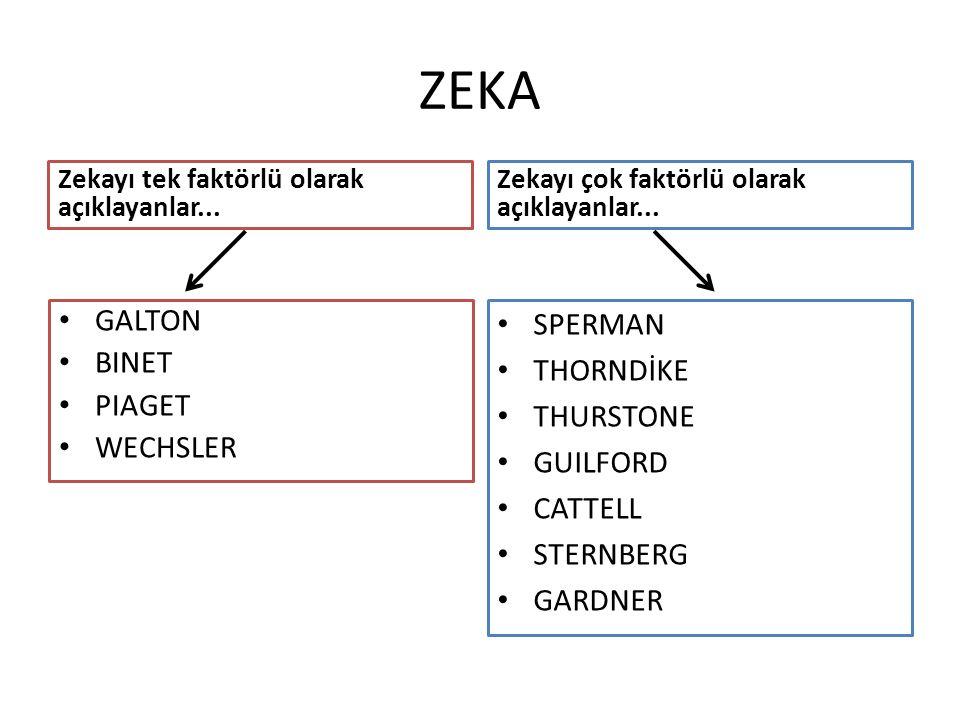 ZEKA GALTON BINET PIAGET WECHSLER SPERMAN THORNDİKE THURSTONE GUILFORD