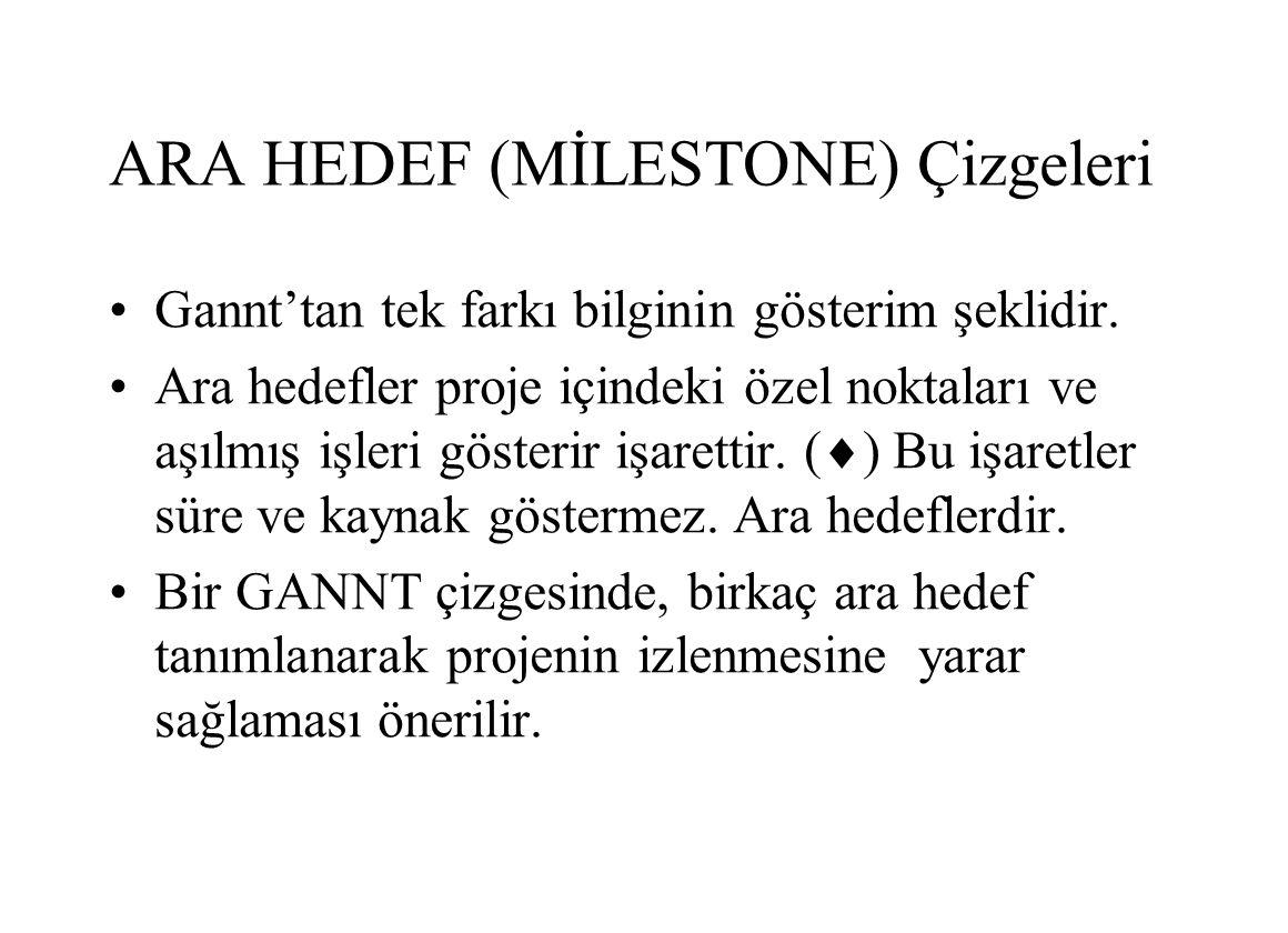 ARA HEDEF (MİLESTONE) Çizgeleri
