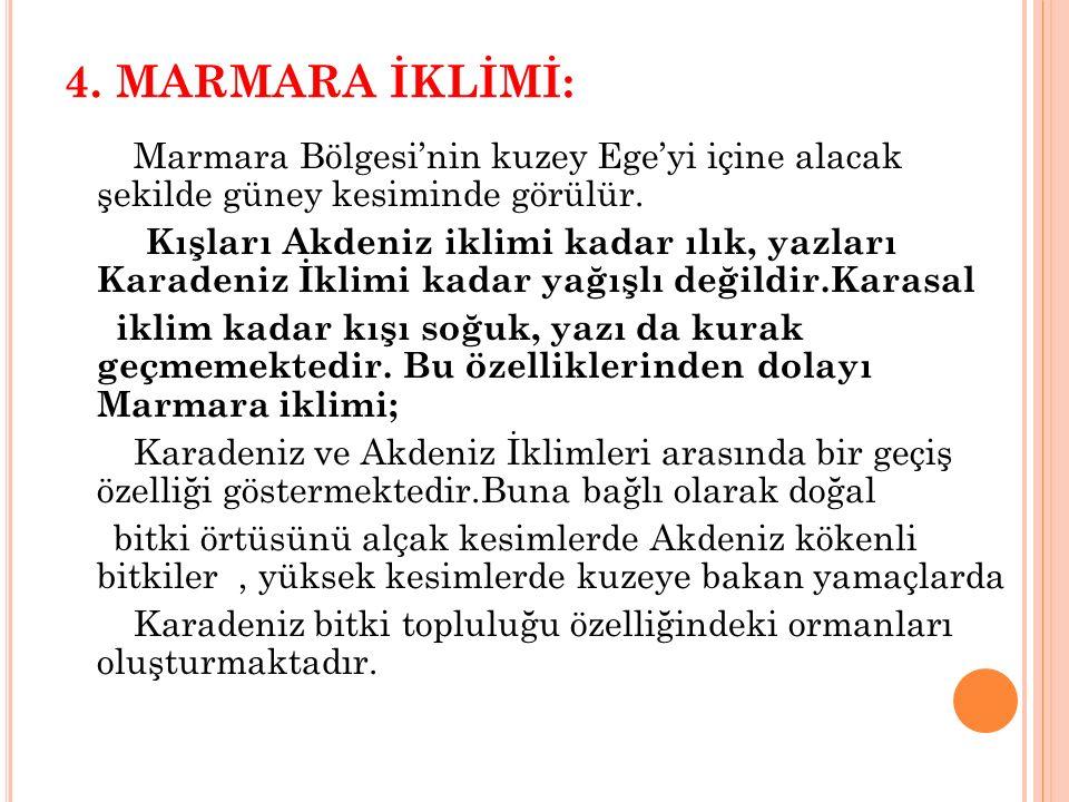 4. MARMARA İKLİMİ: