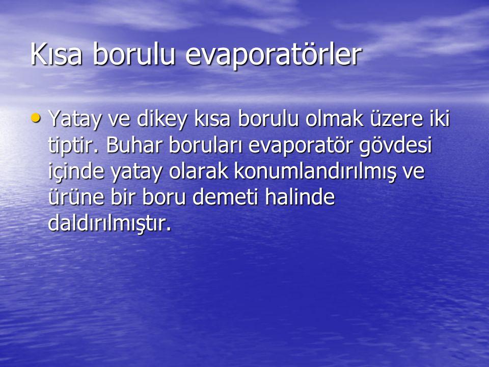 Kısa borulu evaporatörler