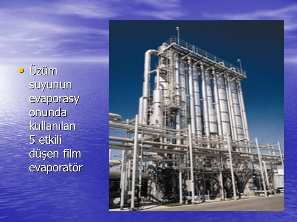 Üzüm suyunun evaporasyonunda kullanılan 5 etkili düşen film evaporatör