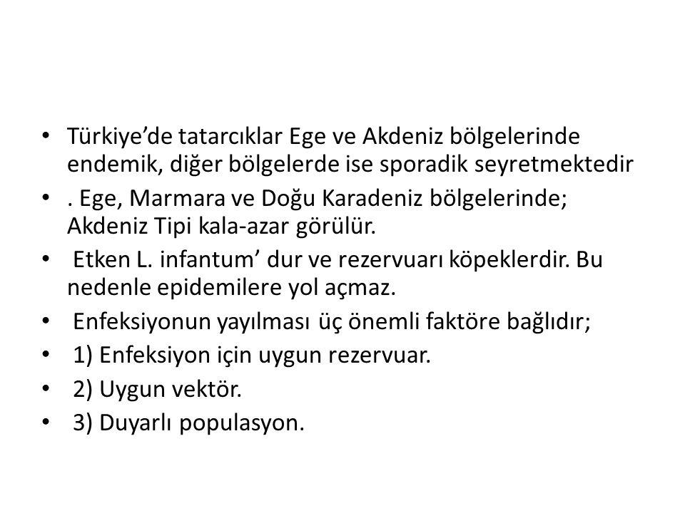 Türkiye'de tatarcıklar Ege ve Akdeniz bölgelerinde endemik, diğer bölgelerde ise sporadik seyretmektedir