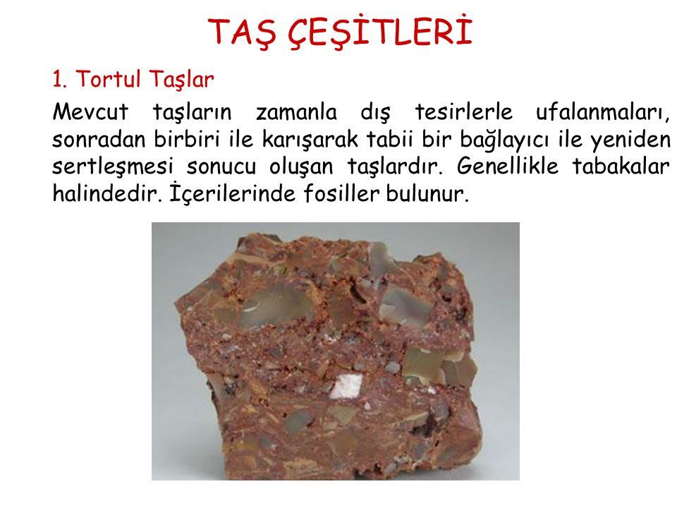 TAŞ ÇEŞİTLERİ 1. Tortul Taşlar.