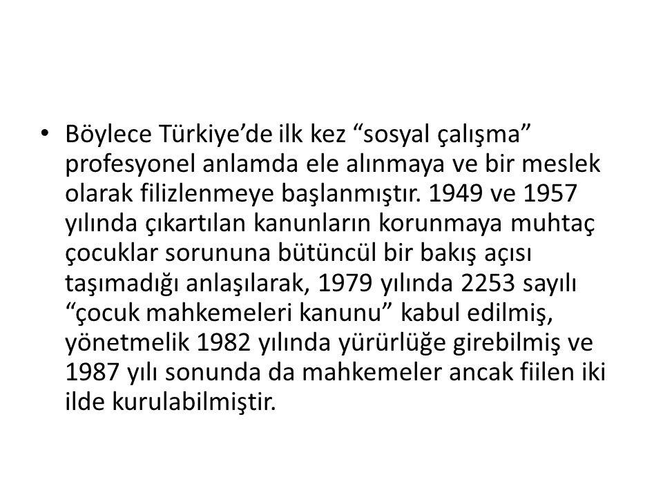 Böylece Türkiye'de ilk kez sosyal çalışma profesyonel anlamda ele alınmaya ve bir meslek olarak filizlenmeye başlanmıştır.