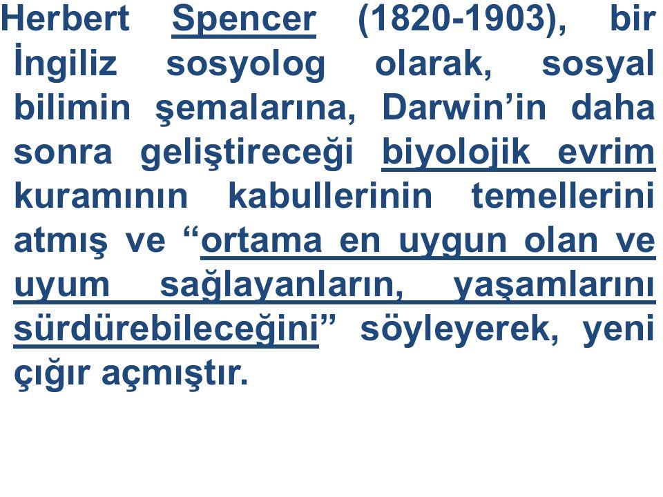 Herbert Spencer (1820-1903), bir İngiliz sosyolog olarak, sosyal bilimin şemalarına, Darwin'in daha sonra geliştireceği biyolojik evrim kuramının kabullerinin temellerini atmış ve ortama en uygun olan ve uyum sağlayanların, yaşamlarını sürdürebileceğini söyleyerek, yeni çığır açmıştır.