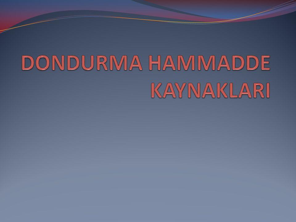 DONDURMA HAMMADDE KAYNAKLARI