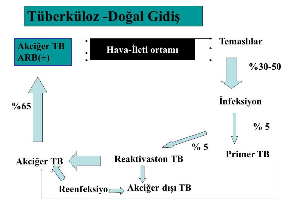 Tüberküloz -Doğal Gidiş