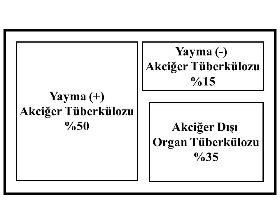 Yayma (+) Akciğer Tüberkülozu %50 Yayma (-) %15 Akciğer Dışı Organ Tüberkülozu %35