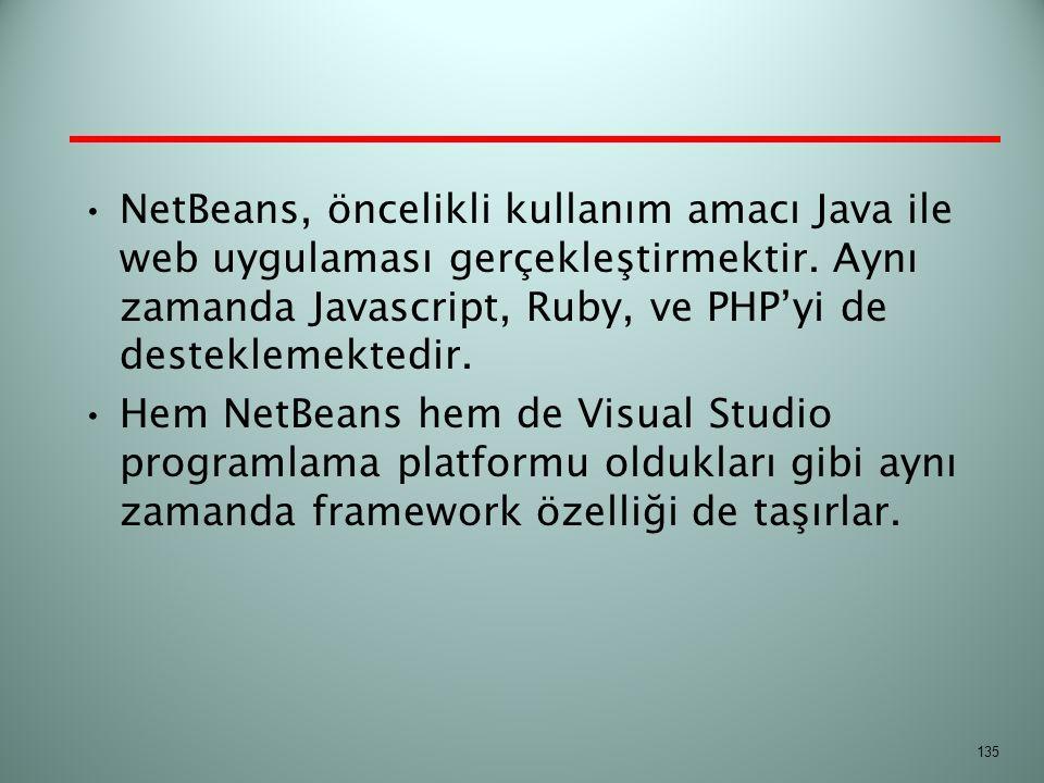 NetBeans, öncelikli kullanım amacı Java ile web uygulaması gerçekleştirmektir. Aynı zamanda Javascript, Ruby, ve PHP'yi de desteklemektedir.