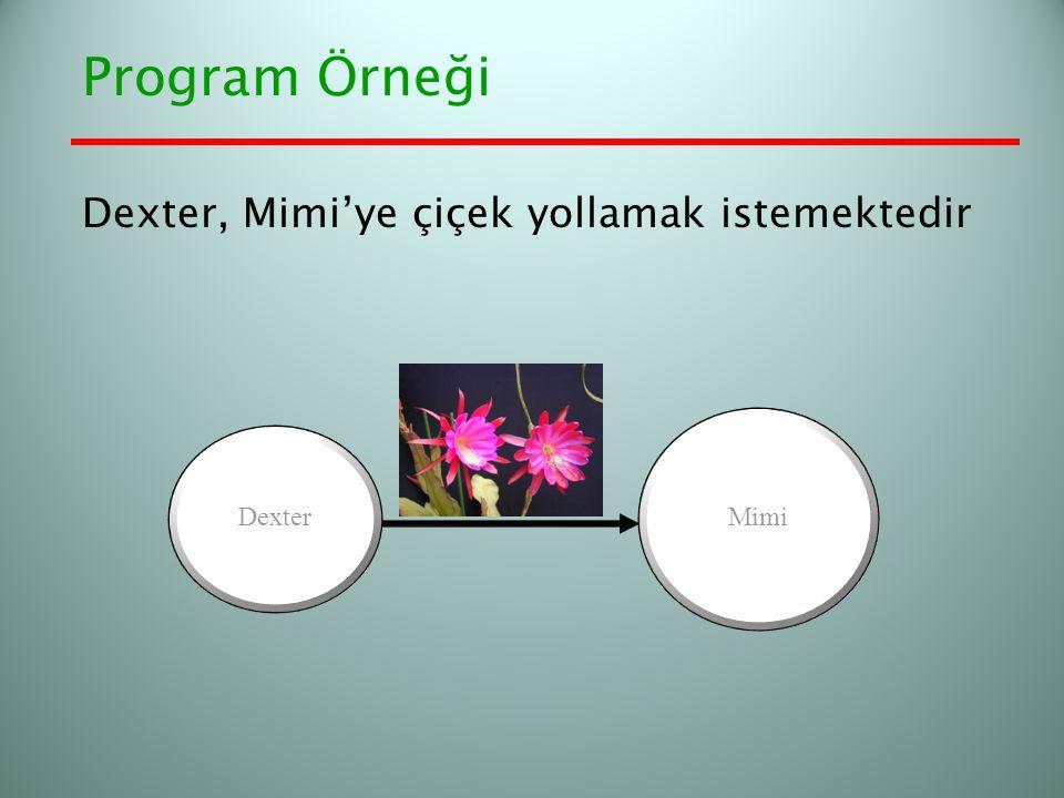 Program Örneği Dexter, Mimi'ye çiçek yollamak istemektedir Mimi Dexter