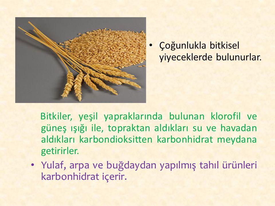 Çoğunlukla bitkisel yiyeceklerde bulunurlar.