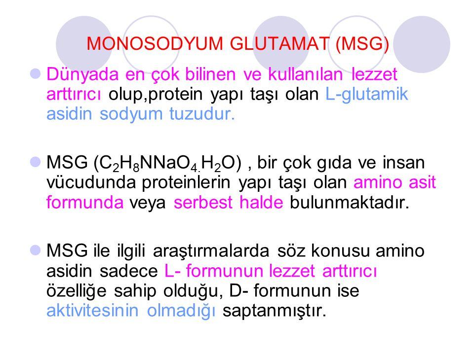 MONOSODYUM GLUTAMAT (MSG)