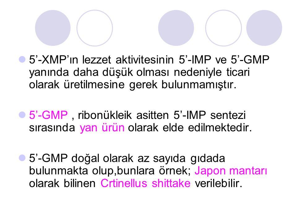 5'-XMP'ın lezzet aktivitesinin 5'-IMP ve 5'-GMP yanında daha düşük olması nedeniyle ticari olarak üretilmesine gerek bulunmamıştır.