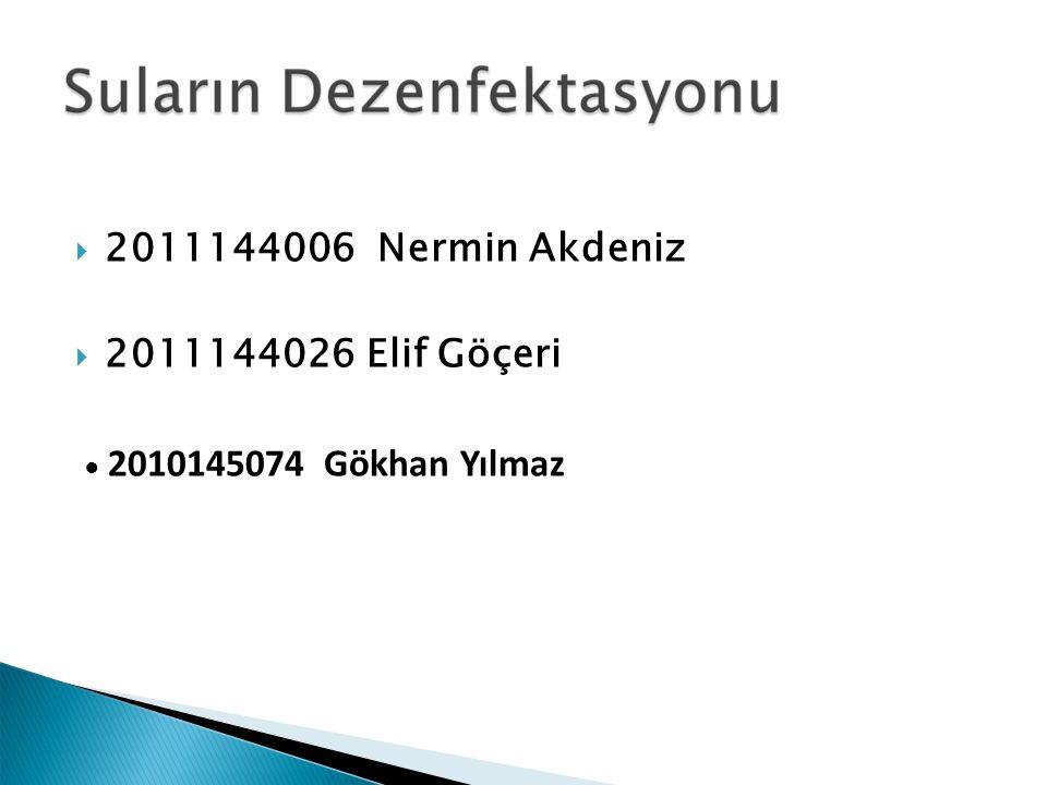 2011144006 Nermin Akdeniz 2011144026 Elif Göçeri