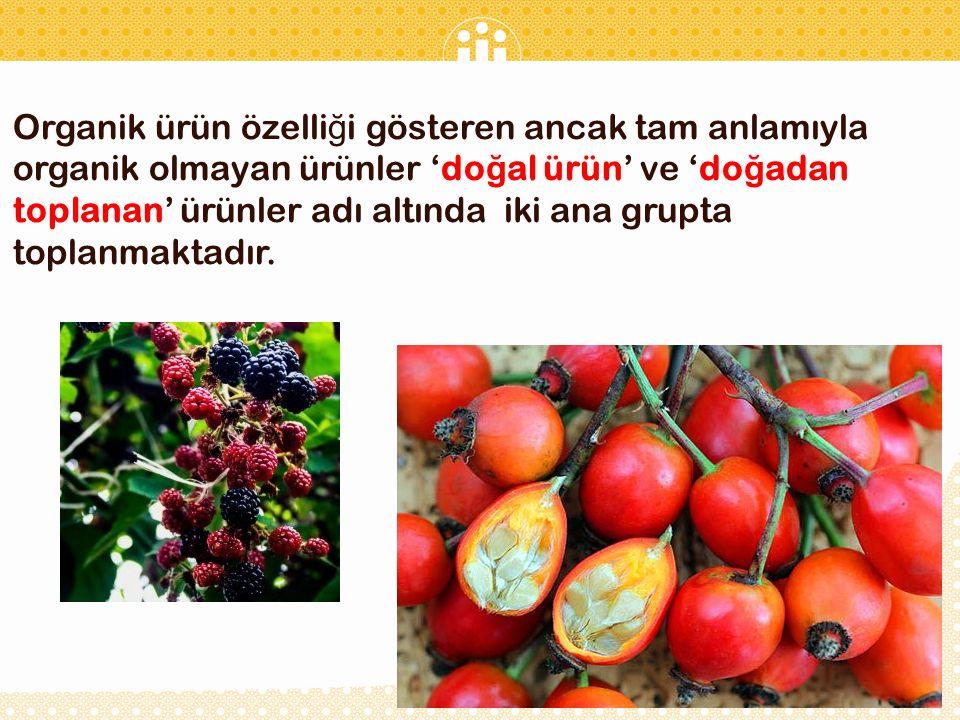 Organik ürün özelliği gösteren ancak tam anlamıyla organik olmayan ürünler 'doğal ürün' ve 'doğadan toplanan' ürünler adı altında iki ana grupta toplanmaktadır.