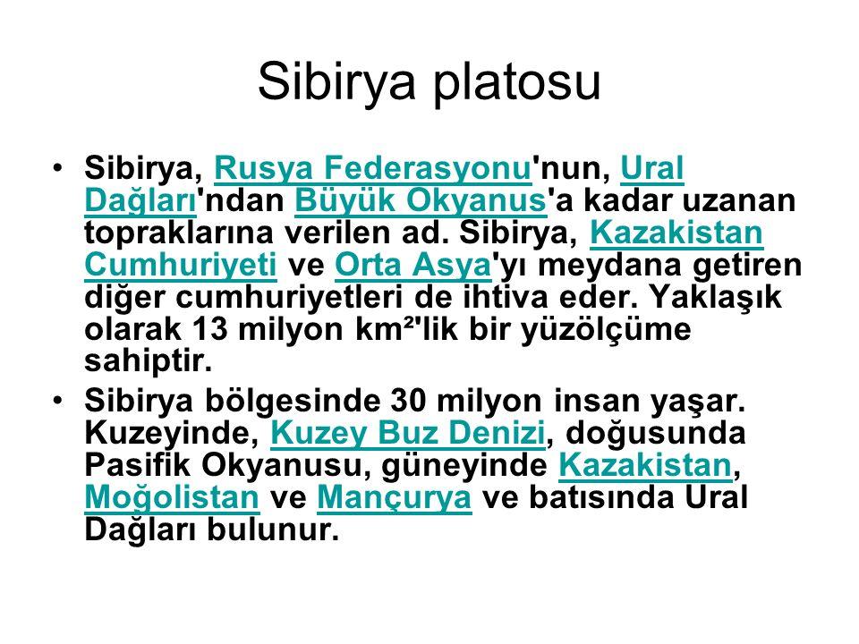 Sibirya platosu