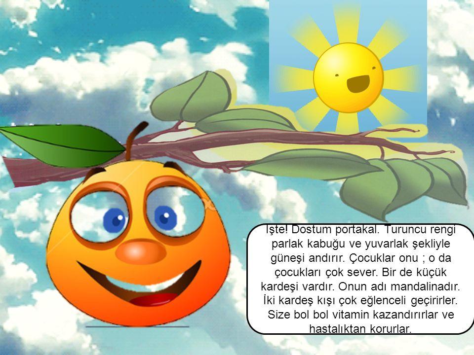 İşte. Dostum portakal. Turuncu rengi parlak kabuğu ve yuvarlak şekliyle güneşi andırır.