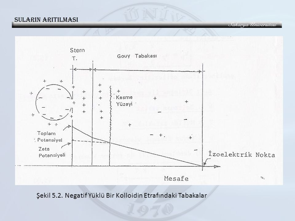 Şekil 5.2. Negatif Yüklü Bir Kolloidin Etrafındaki Tabakalar