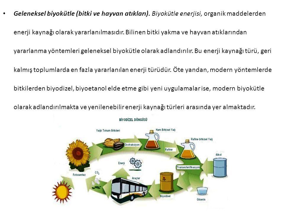Geleneksel biyokütle (bitki ve hayvan atıkları)