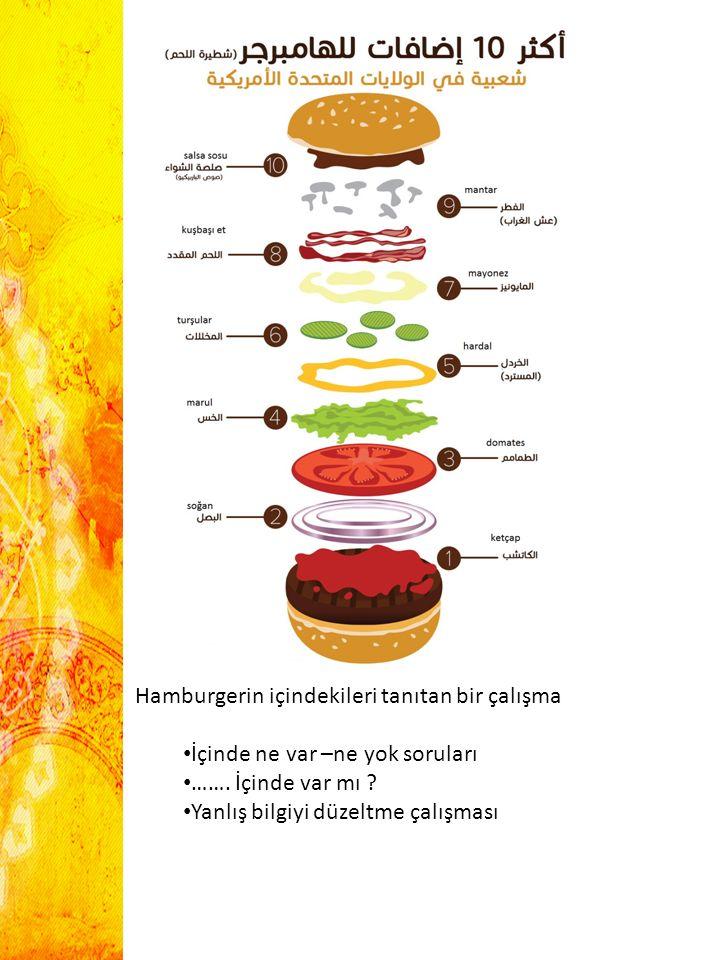 Hamburgerin içindekileri tanıtan bir çalışma