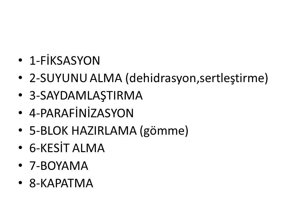 1-FİKSASYON 2-SUYUNU ALMA (dehidrasyon,sertleştirme) 3-SAYDAMLAŞTIRMA. 4-PARAFİNİZASYON. 5-BLOK HAZIRLAMA (gömme)