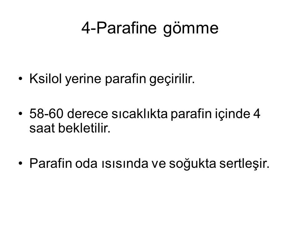 4-Parafine gömme Ksilol yerine parafin geçirilir.