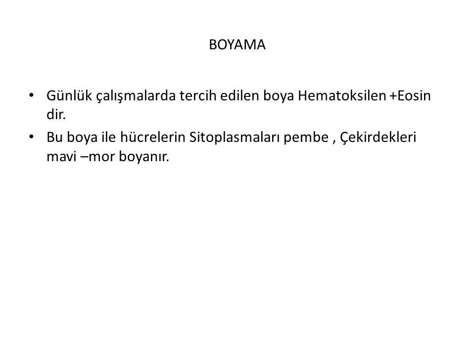 BOYAMA Günlük çalışmalarda tercih edilen boya Hematoksilen +Eosin dir.