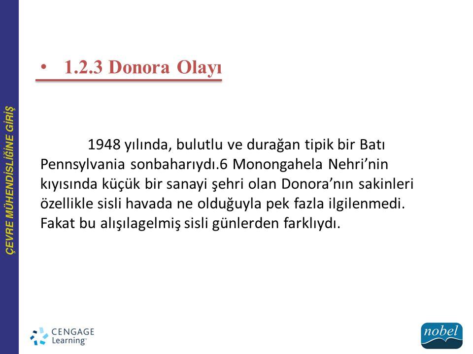 1.2.3 Donora Olayı