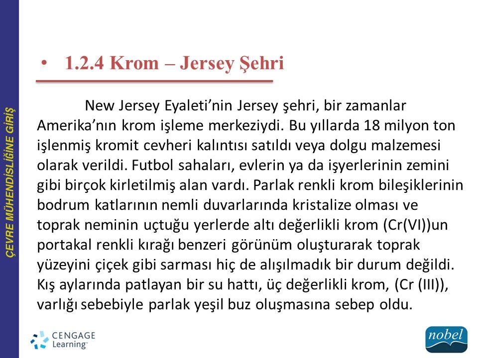 1.2.4 Krom – Jersey Şehri