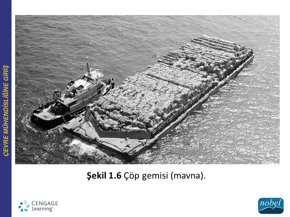 Şekil 1.6 Çöp gemisi (mavna).