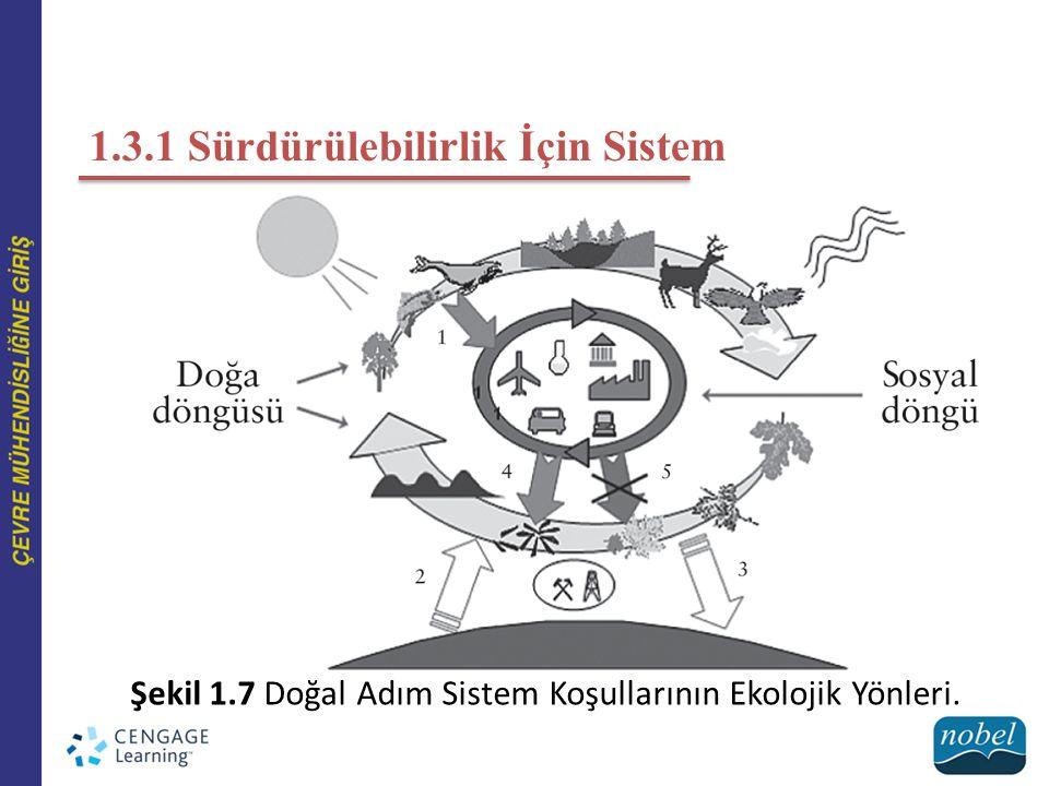 1.3.1 Sürdürülebilirlik İçin Sistem