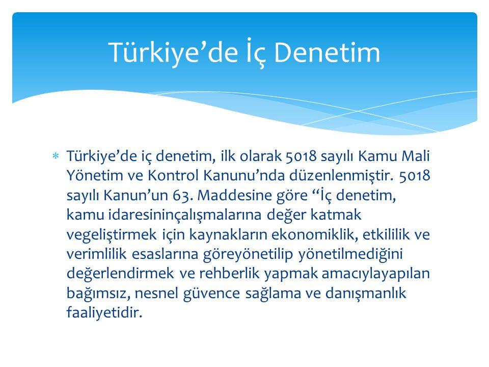 Türkiye'de İç Denetim