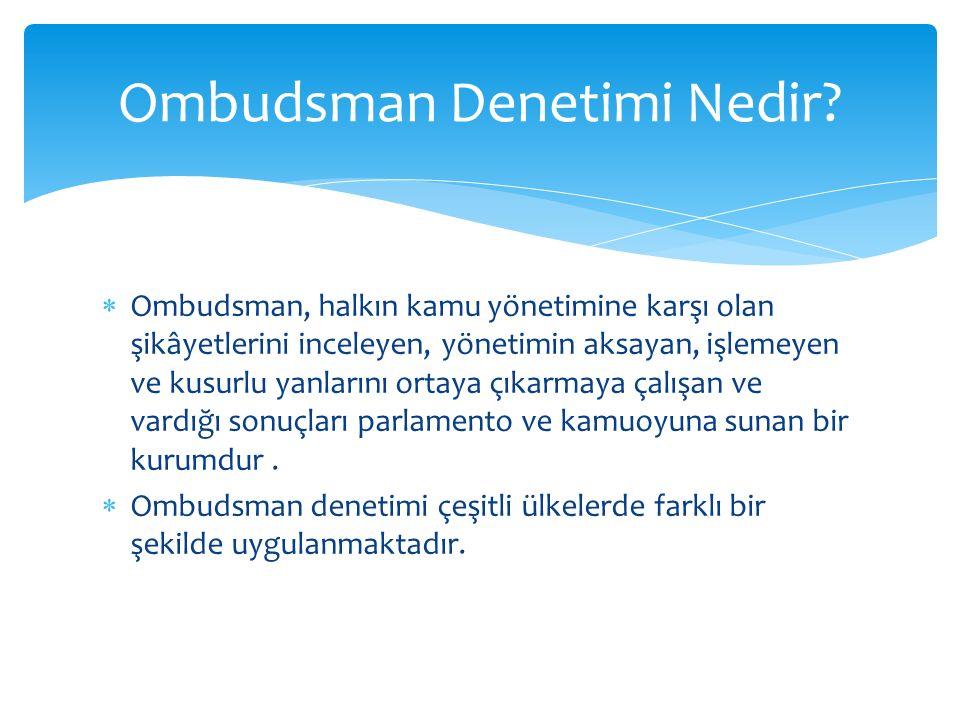 Ombudsman Denetimi Nedir