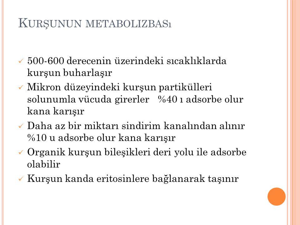 Kurşunun metabolizbası