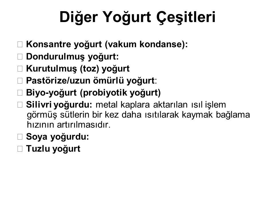 Diğer Yoğurt Çeşitleri