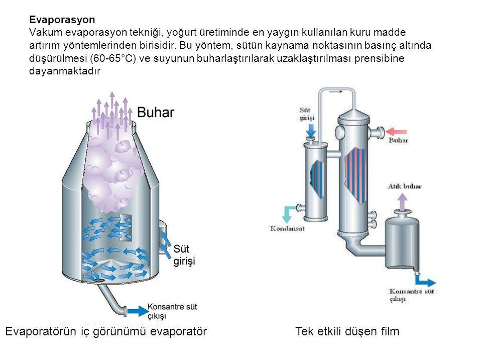 Evaporatörün iç görünümü evaporatör Tek etkili düşen film