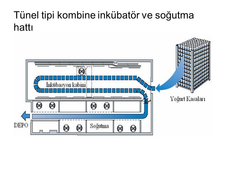 Tünel tipi kombine inkübatör ve soğutma hattı