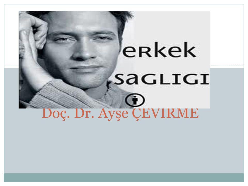 Doç. Dr. Ayşe ÇEVİRME