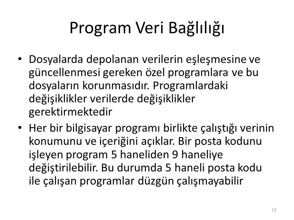 Program Veri Bağlılığı
