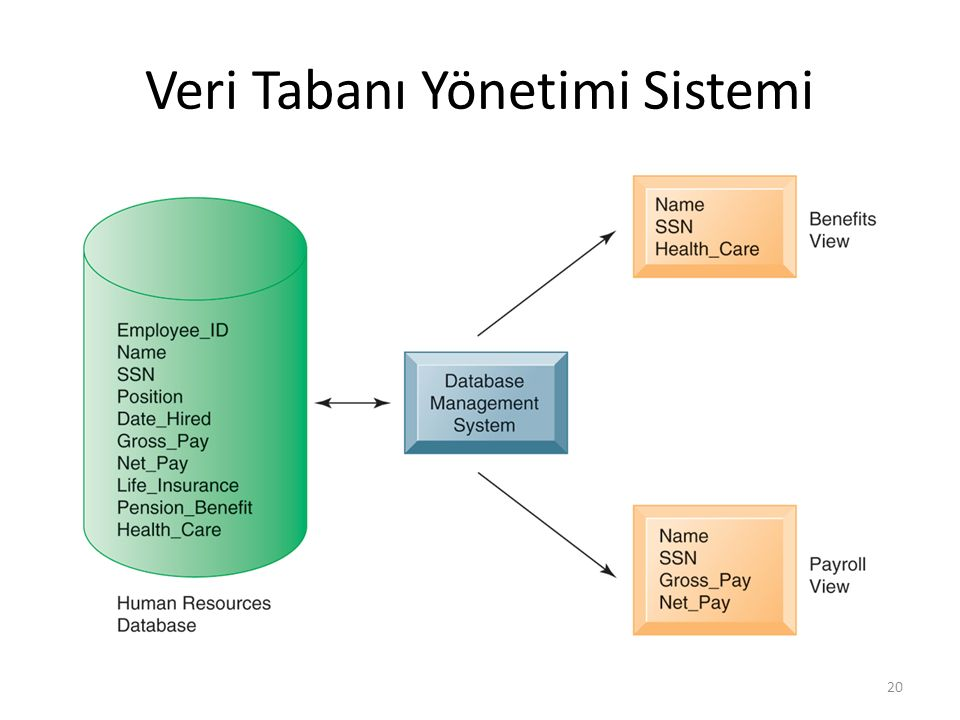 Veri Tabanı Yönetimi Sistemi