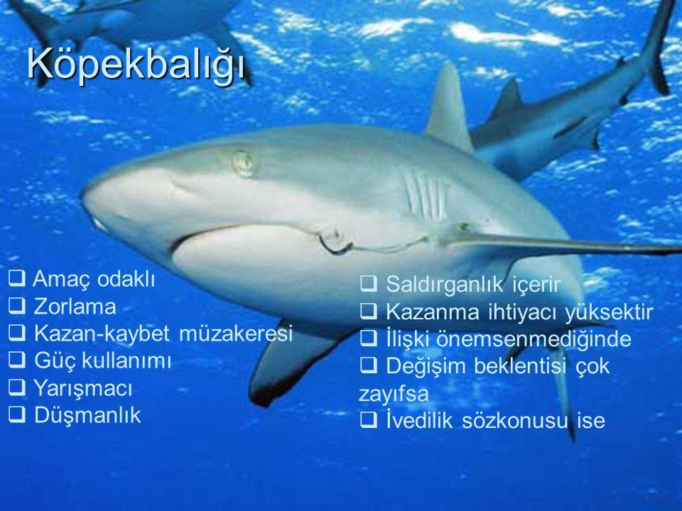 Köpekbalığı Amaç odaklı Saldırganlık içerir Zorlama