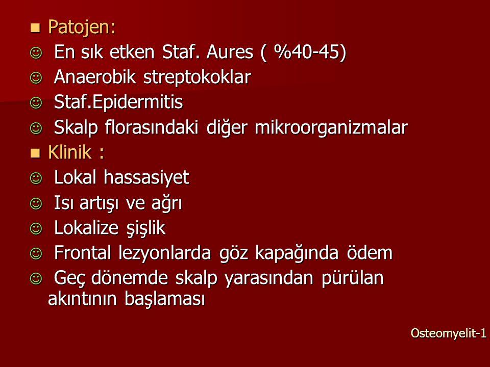 En sık etken Staf. Aures ( %40-45) Anaerobik streptokoklar