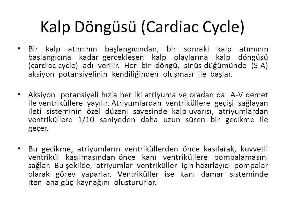 Kalp Döngüsü (Cardiac Cycle)
