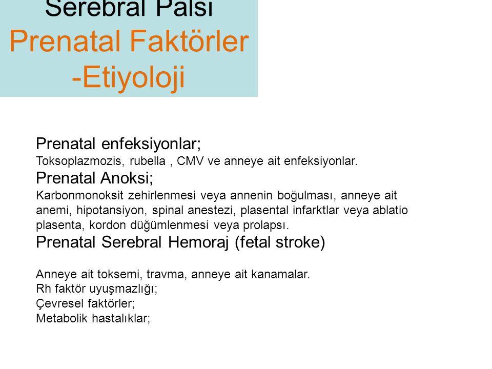 Prenatal Faktörler -Etiyoloji