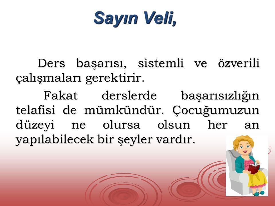 Sayın Veli,