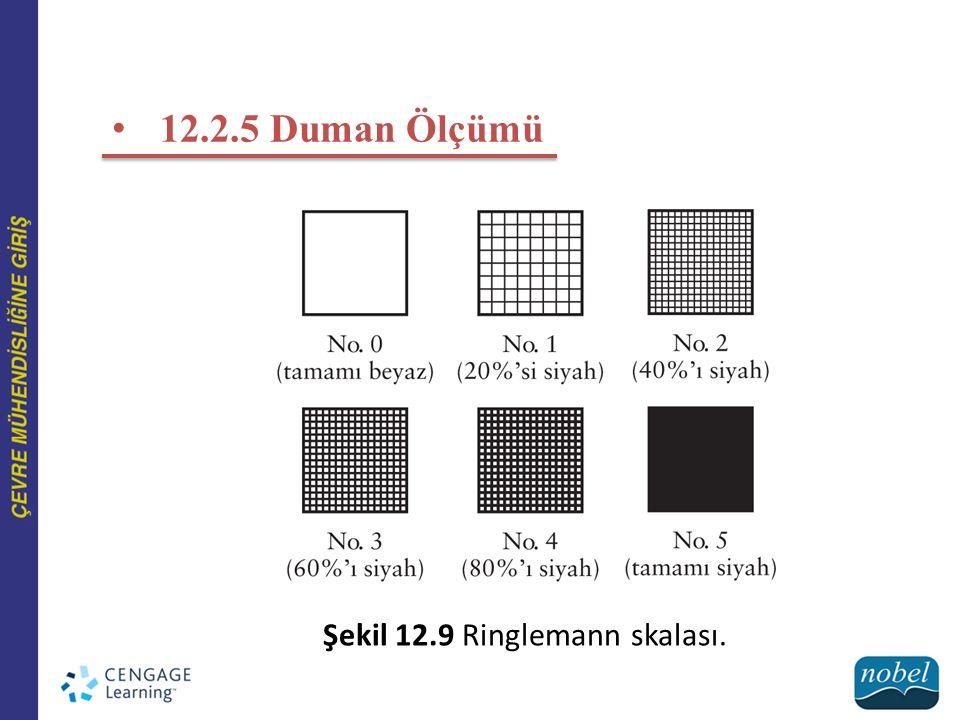 12.2.5 Duman Ölçümü Şekil 12.9 Ringlemann skalası.