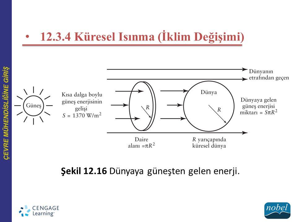 12.3.4 Küresel Isınma (İklim Değişimi)