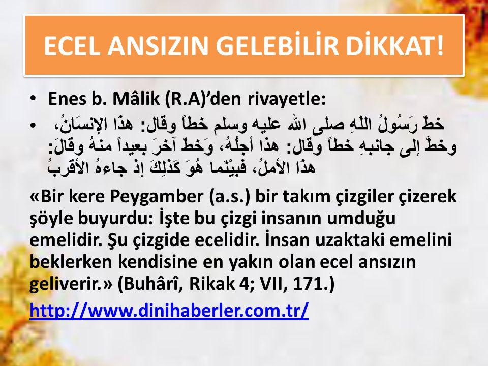 ECEL ANSIZIN GELEBİLİR DİKKAT!