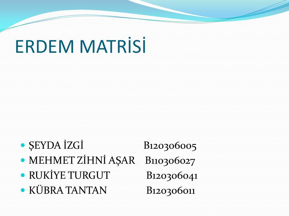 ERDEM MATRİSİ ŞEYDA İZGİ B120306005 MEHMET ZİHNİ AŞAR B110306027